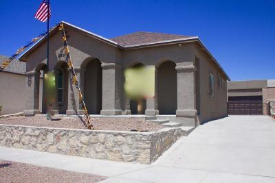 Single Family Home For Sale: 14337 Seth Payne Drive