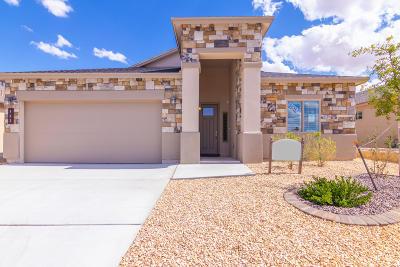 Sunland Park Single Family Home For Sale: 871 Bronze Hill Avenue