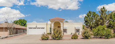 Single Family Home For Sale: 729 Bluff Canyon Circle