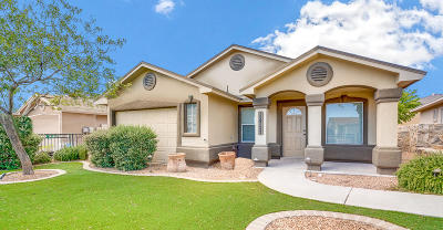 Socorro Single Family Home For Sale: 11620 Flor Achillea Drive
