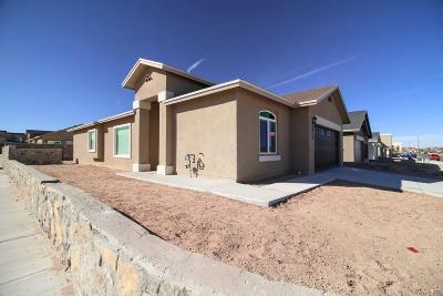 Single Family Home For Sale: 14227 Peyton Edwards Avenue