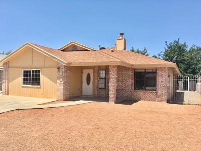 Vista Del Sol Single Family Home For Sale: 11465 David Carrasco Drive