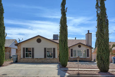 El Paso Single Family Home For Sale: 10816 Quartz Street