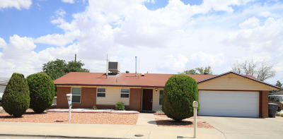 El Paso Single Family Home For Sale: 10160 Suez Avenue