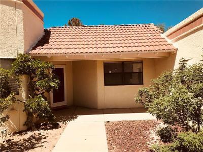 El Paso Single Family Home For Sale: 717 Cheltenham Drive