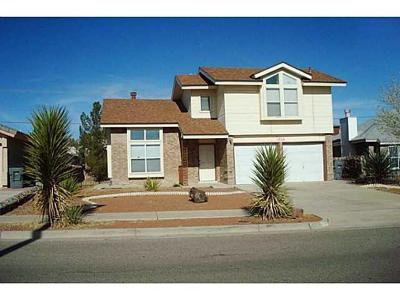 Single Family Home For Sale: 1356 Desierto Azul Drive