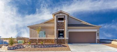 Sunland Park Single Family Home For Sale: 6047 Copper Hill Street