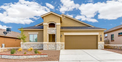 Sunland Park Single Family Home For Sale: 6045 Copper Hill Street
