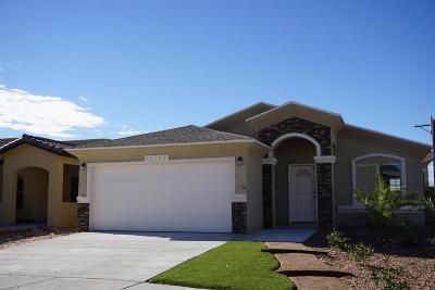 Horizon City Single Family Home For Sale: 13912 Lago Vista Avenue