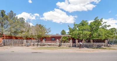 Socorro Single Family Home For Sale: 782 Lupe Anna Lane