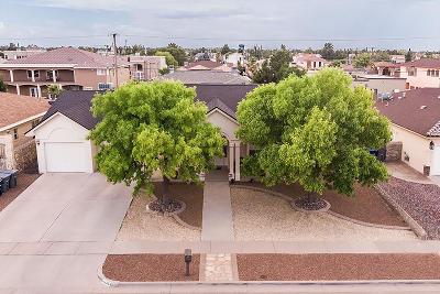 El Paso Single Family Home For Sale: 11428 Menlo Avenue