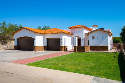El Paso Single Family Home For Sale: 1041 Maximo Street