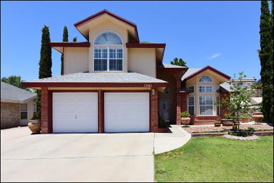 Vista Del Sol Single Family Home For Sale: 1361 Jim Paul Drive