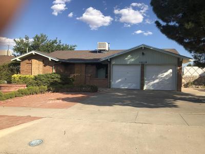 El Paso Single Family Home For Sale: 10518 Crete Drive