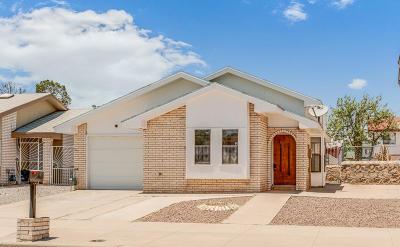 El Paso Single Family Home For Sale: 11353 Lake Geneva Drive
