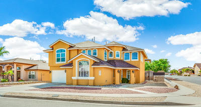 El Paso Single Family Home For Sale: 1433 Jettie Ray Way