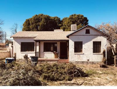 El Paso Single Family Home For Sale: 209 Buena Vista Street