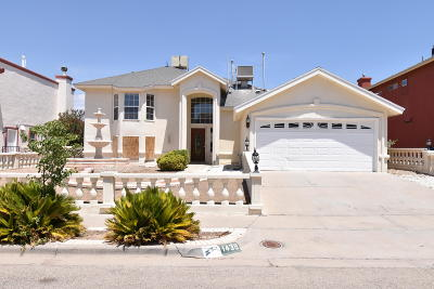 El Paso Single Family Home For Sale: 1438 Dos Deannas Drive