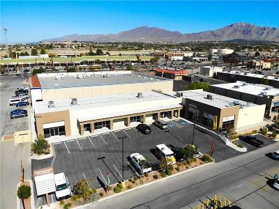 Commercial For Sale: 7455 N Mesa Street #F, G,  H