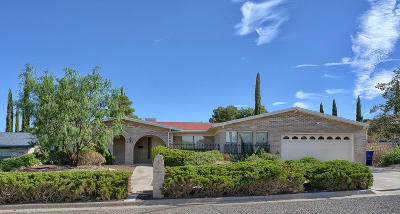 El Paso Single Family Home For Sale: 6509 Cresta Bonita Drive