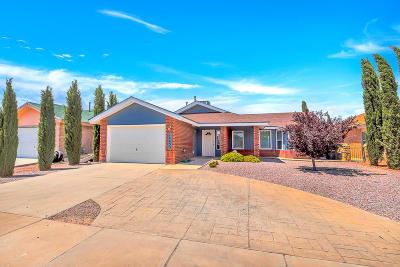 Single Family Home For Sale: 14453 Desierto Lindo Avenue