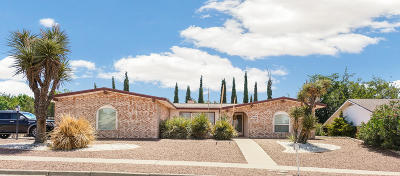 Vista Del Sol Single Family Home For Sale: 1468 Monte Negro Drive