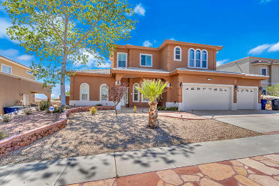 El Paso Single Family Home For Sale: 6381 Franklin Trail Drive