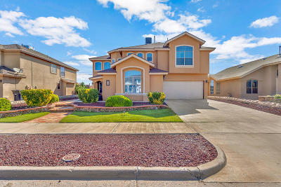 Horizon City Single Family Home For Sale: 432 Sand Verbena Street
