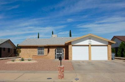 El Paso Rental For Rent: 1703 Paul Moran Place