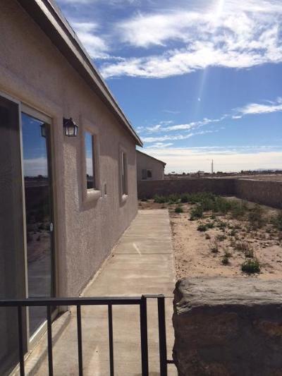 Single Family Home For Sale: 14341 Seth Payne Drive