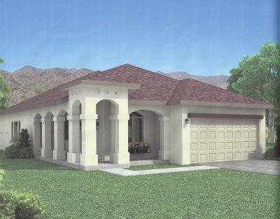 Single Family Home For Sale: 14349 Seth Payne Drive