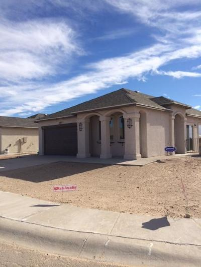 Single Family Home For Sale: 14353 Chris Zingo