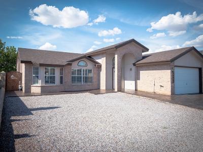 Single Family Home For Sale: 14421 Desierto Bueno Avenue