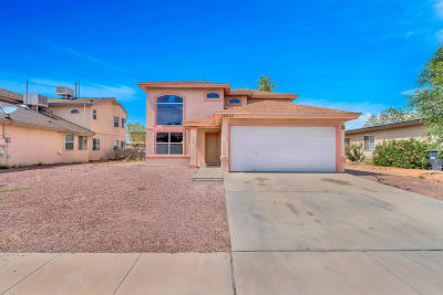 Single Family Home For Sale: 14237 Desert Cloud Drive