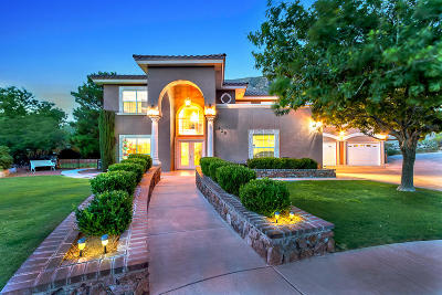Single Family Home For Sale: 425 Mesilla Vista Lane
