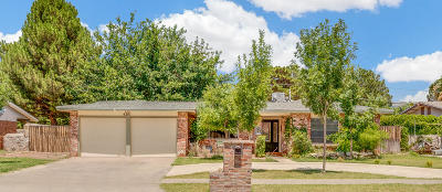 El Paso Single Family Home For Sale: 4201 Siete Leguas Road