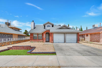 El Paso Single Family Home For Sale: 11473 David Carrasco Drive