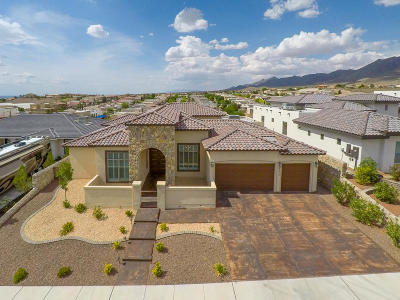 El Paso Single Family Home For Sale: 6573 Contessa Ridge