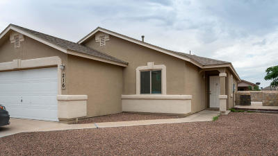 Socorro Single Family Home For Sale: 216 Flor Azucena Drive