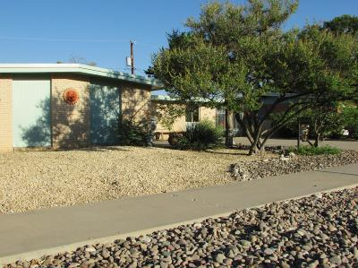 El Paso Single Family Home For Sale: 7308 Clemente Avenue