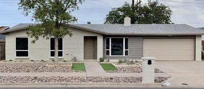 El Paso Single Family Home For Sale: 10608 Pleasant Hill Drive