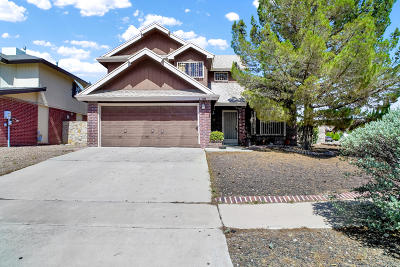 El Paso Single Family Home For Sale: 1100 Chiricahua Drive