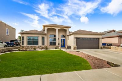 El Paso Single Family Home For Sale: 12705 Tierra Arleth Court
