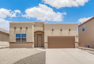 El Paso Single Family Home For Sale: 316 Covington Ridge Way Way