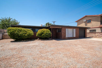 Single Family Home For Sale: 5102 Danny Drive
