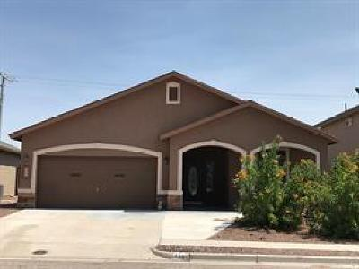 Single Family Home For Sale: 338 Emerald Acres Street