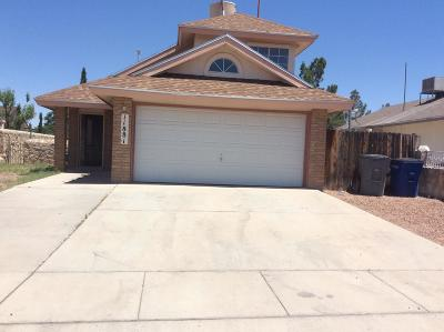 El Paso Single Family Home For Sale: 11881 Snow Hawk Street