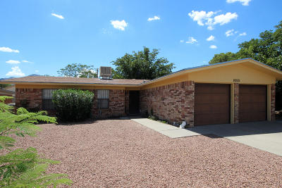 El Paso Single Family Home For Sale: 10521 Gala Street