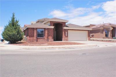 El Paso Single Family Home For Sale: 13733 Paseo Sereno Drive