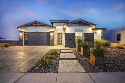 El Paso Single Family Home For Sale: 12396 Freshwater Drive